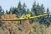 Private Aircruiser N7692B (Josh Kaiser) Tags: aircruiser bellanca n7692b