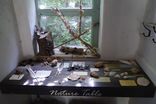 Nature table at Tyneham Village School