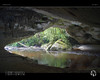 Moria Arch I (tomraven) Tags: arch limestone cave river kahurangi water green rainforest tomraven aravenimage q12017 pentax k50 oparara opararabasin
