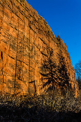 Redrock Where Prosaurapod Dinosaurs Roamed- Triassic Period (Skyelyte) Tags: dinosaurs prosaurapod triassicperiod redrock paleontologist manchesterconnecticut connecticut ancientrock history newengland rock stone fossils bones connecticutvalley outdoor explore