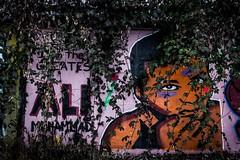 Muhammad Ali (nelly_tran_photography) Tags: streetart streetcast streetfotografie zürich 2017 muhammad ali graffity
