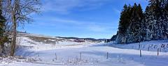 Le Lieu en hiver (Diegojack) Tags: lelieu vaud suisse valléedejoux hiver glace lacdejoux neige panorama