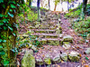 Ancient Path (Francesco Impellizzeri) Tags: erice sicilia