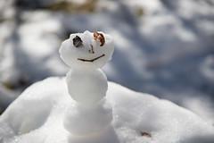 NIK_1469 (DaaamnGina) Tags: nikon d600 snow snowman small happy 24120