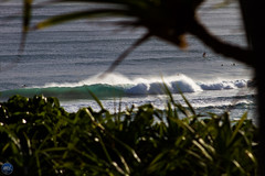 Secluded (Moore_Imagery) Tags: surf surfer surfing wave waves lines barrel barrels tubes snapper snapperrocks coolangatta cooly coast goldcoast goldy australia qld queensland winston cyclone swell ocean rocks sand beach beautiful landscape photography 2016