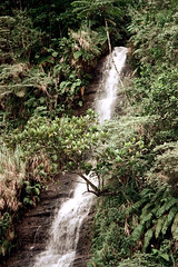 28-157 (ndpa / s. lundeen, archivist) Tags: cliff color film fiji rural 35mm countryside waterfall nick southpacific 28 1970s hillside 1972 dewolf oceania fijian pacificislands nickdewolf photographbynickdewolf reel28