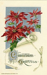 Antique Christmas Postcard - Poinsettia (Brynn Thorssen) Tags: santa christmas xmas red holiday snow green vintage gold antique holly postcards yule fatherchristmas santaclaus merrychristmas santaklaus happynewyear happychristmas yuletide oldsaintnick