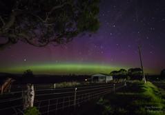 Aurora Australis Somerset Tasmania (Dave Bosworth Photography) Tags: nikon australia aurora tasmania auroraaustralis davebosworth d7200 nikond7200 aurorasomerset