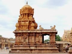 The Big Temple (8): Shrine dedicated to Chandeswara or Chandikeswara (v s raam (on/off)) Tags: india tower architecture unescoworldheritagesite gigantic thanjavur chanda lingam tamilnadu shikara sikhara chola tanjore bigtemple lordshiva vimanam shikhara sanctorum lordsiva rajarajachola vimana mahalingam periyakovil thanjai santum sikara brihadeeswarartemple chandesa tanjai chandikeswara chandikesvara rajarajacholai rajarajeswaram nayanmar greatlivingcholatemples peruvudaiyarkovil garbhagriha rajarajeshwaratemple tanchai thanchai chandeeswara chandikeshara saivasaint shaivasaint