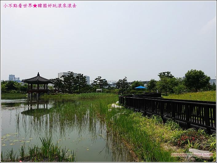 大田韓巴樹木園 (15).JPG
