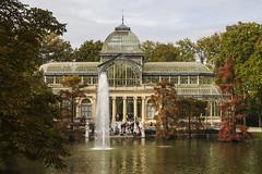 Retirement [44:52 - Autumnal Image] (ponzoñosa) Tags: madrid parque color hoja otoño estanque cristal retiro palacio