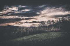 Schwaighof I (alexanderkoch) Tags: sunset cloud landscape evening abend sonnenuntergang outdoor wiese wolken gras landschaft mystic acre acker mystisch drausen