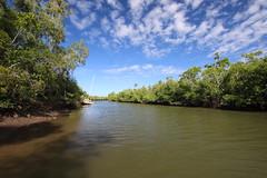 Hull River boat ramp (1) (sixdos) Tags: canon landscape mangrove queensland missionbeach boatramp tropicalnorthqueensland hullriver farnorthqueensland canoneos7dmarkii missionbreaze