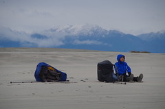 Toots takes a rest on Farewell Spit (4seasonbackpacking) Tags: winter newzealand mountain mountains beach walking sand hiking backpacking nz beaches southisland toots ta tramping nobo farewellspit achara teararoa teararoatrail 4seasonbackpacking fourseasonbackpacking tatrail