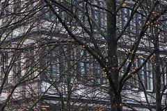 Ghent, the most beautiful town in Flanders (Zeldenrust) Tags: christmas weihnachten navidad town nightshot belgium belgique belgi ciudad stadt nol ghent gent ville stad christmastime gand kerstmis gante flanders belgien flandres nachtfotografie blgica vlaanderen flandern avondfotografie flandre flandes photographiedenuit photodenuit zeldenrust kertsmis ghentbynight christmasinghent abendfotografie vanzeldenrust hendrikvanzeldenrust themostbeautifultown themostbeautifultowninflandersghent