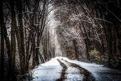 A Hike To The Dike (David ZImagery) Tags: biological brodheadarea edting hdr nature parks places plants roads southern structures things weather wisconsin gravel snow treesleaves