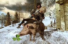 """""""May the New Year bring you courage to break your resolutions early!"""" :D (Roy Mildor CEO of RM ~Art of poses ~) Tags: roymildor rmartofposes pig happynewyear sylvester photo sl secondlife friends card grusskarte"""