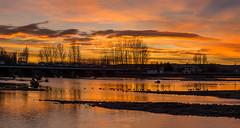 Puesta de sol en el Órbigo (dnieper) Tags: atardecer puestadesol sunset ríoórbigo león spain españa