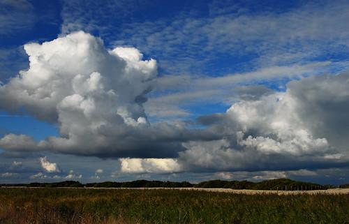 Denge Marsh Cloudscape