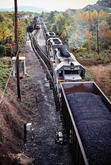 LN, Williamsburg, Kentucky, 1980 (railphotoart) Tags: ln nbsb meet williamsburg ky stillimage williamsburgky indianakentuckytennessee unitedstates