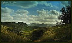Landscapes of Sicily - Gennaio-2017 (agostinodascoli) Tags: texture nikon nikkor nature landscape paesaggi cianciana sicilia agostinodascoli alberi cielo piante fotografia photo monti