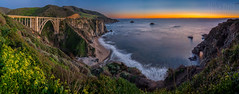 Bixby Bridge (Explore #50) (mikeSF_) Tags: california monterey countybigsur bixbybridge rockycreek bridge flowers coast shore ocean pacific landscape night sunset pentax 645 645z mikeoria oria carmel point rocky