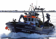 Ria Formosa 2016 - O Barco 'Peixe Azul' (Markus Lüske) Tags: portugal algarve ria formosa riaformosa olhao olhão faro lueske lüske luske