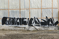 ► Conie - Tomek ◄ (Ruepestre) Tags: conie tomek pal coco93 cony paris art france streetart street graffiti graffitis urbain urbanexploration urban