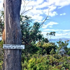 Steep descent. Beware of snakes. Bruny Island.