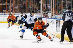"Missouri Mavericks vs. Wichita Thunder, February 4, 2017, Silverstein Eye Centers Arena, Independence, Missouri.  Photo: John Howe / Howe Creative Photography • <a style=""font-size:0.8em;"" href=""http://www.flickr.com/photos/134016632@N02/32753145465/"" target=""_blank"">View on Flickr</a>"