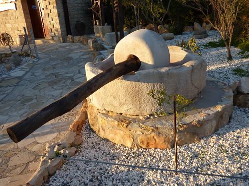 Paphos Zoo (2)