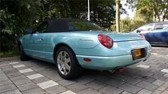 Ford Thunderbird 4.0 V8 (sjoerd.wijsman) Tags: zuidholland holanda olanda holland niederlande nederland thenetherlands netherlands paysbas carspot carspotting cars car voiture fahrzeug auto autos delft tudelft blue bluecar bluecars blau blauw bleu convertible cabriolet cabrio fordthunderbird ford thunderbird 05nnh3 sidecode7 import 30092016