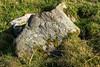 Blackhill_DSC5165.jpg (tookiebunten) Tags: walking cairn hillfort lanarkshire nts blackhill clydevalley nationaltrustforscotland southlanarkshire blackhillviewpoint walkwithtookie