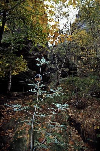 """Elbsandsteingebirge (115) Pfaffenstein Nadelöhr • <a style=""""font-size:0.8em;"""" href=""""http://www.flickr.com/photos/69570948@N04/22074255092/"""" target=""""_blank"""">View on Flickr</a>"""