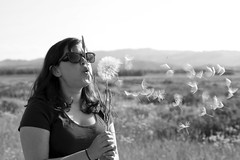 salsify (shoots canons) Tags: light portrait blackandwhite bw woman girl whimsy blowing blow seeds seedhead disperse backlit wyoming wish float sagebrush aster airy dispersal blown salsify makeawish goatsbeard tragopodon
