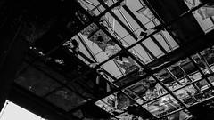 20150725-P1580401 (katharina_amari) Tags: blackandwhite berlin architektur bauten teufelsberg lostplaces beelitzheilstätten beelitzerheilstätten