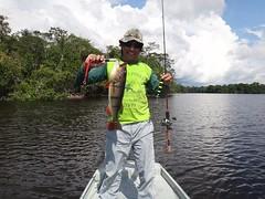 Amazonia 2012 (8)