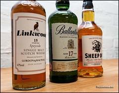 Whisky Whisky Whisky (Gareth Harper) Tags: scotland sheep scottish 15 single whisky 17 dip blend malt linkwood speyside 2015 ballantines photoecosse vatted