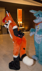 DSC_0129 (Acrufox) Tags: chicago illinois furry midwest december ohare rosemont convention hyatt regency 2014 fursuit furfest fursuiting acrufox mff2014