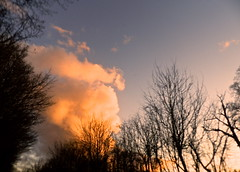 SUN REFLECTION (conespider) Tags: uk trees winter sunset england sky weather clouds outside nikon outdoor gb reflaction 2015 westberkshire