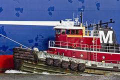r_151123194_skelsisl_a (Mitch Waxman) Tags: newyorkcity newyork ship cargo tugboat statenisland moran newyorkharbor killvankull johnskelson