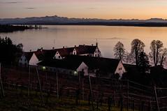 Bodensee (Haiwehbndner1909) Tags: lake bodensee constance maurach uhldingen mhlhofen