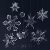 Happy New Year! (marianna_a.) Tags: 2017 happy new year snow flakes snowflakes crystal ice macro micro abstract blue mariannaarmata canada panasonic lumix lumixstories
