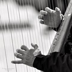 Les mains virtuoses (Photoeric_) Tags: fingers doigts main harpe street rue motmartre