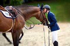 Horse Kiss (zebrazoma) Tags: jumping dinard horse cheval race course cavalière rider kiss baiser nikon d810 70200 nikonflickraward