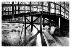 The bridge (leo.roos) Tags: tegenlicht againstthelight bridge brug shadows schaduwen silhouet silhouette ockenburg ockenburgh denhaag thehague sigmae1928 noiretblanc nex6 nex dayprime day19 dayprime2017 dyxum challenge prime primes lens lenses lenzen brandpuntsafstand focallength fl darosa leoroos contrejour