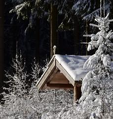 (Gerlinde Hofmann) Tags: germany thuringia village bürden snow conifer cabin wooden woodenbuilding