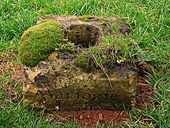 Marjorie! (springblossom3) Tags: chipping campden gloucestershire church relic graveyard nature moss grass cotswolds religion worship macro