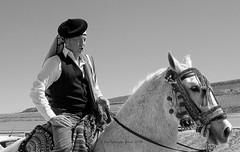 Caballos y Jinetes.Alameda (Málaga) (lameato feliz) Tags: caballo jinete alameda bandolero