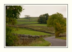 Down those Country Roads (Audrey A Jackson) Tags: canon60d cumbria lakedistrict countryside road nature walls hills sky sheep trees autumn 1001nightsmagiccity